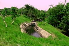 Een rivier aan irigation in pandeglang banten Indonesië met groene mening stock afbeelding