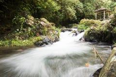 een rivier in Bali Royalty-vrije Stock Fotografie