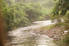 Een rivier bij wildernis stock foto