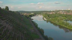 Een rivier bij zonsondergang binnen - tussen wijngaarden en bos stock footage