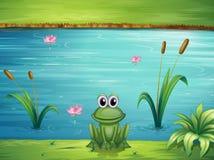 Een rivier en een kikker vector illustratie