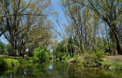 Een rivier in Johannesburg wordt gefotografeerd dat Stock Foto's