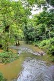 Een rivier in Kao Yai-berg bij nationaal park, Thailand royalty-vrije stock afbeeldingen