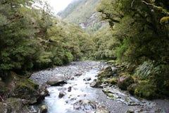 Een rivier neemt het, Nieuw Zeeland door Stock Afbeeldingen