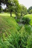 Een riviermening Stock Afbeeldingen