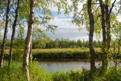 Een Rivieroeverlandschap Stock Afbeelding