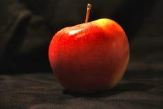 Een rode appel royalty-vrije stock afbeelding