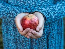 Een rode appel in de handen van een klein meisje stock foto's