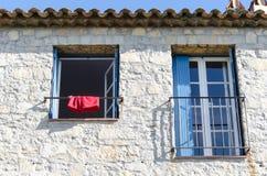 Een rode bokser bij een venster Stock Afbeeldingen