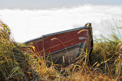 Een rode kano dokte in lang gras Stock Afbeeldingen