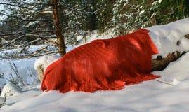 Een rode sjaal op een witte sneeuw royalty-vrije stock afbeelding