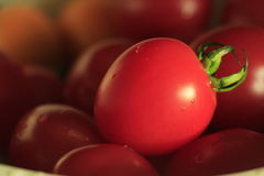 Een rode tomaat Royalty-vrije Stock Afbeeldingen