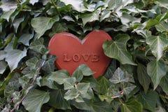 Een roestig hart in de klimop stock afbeelding