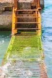 Een roestige ladder in het water stock fotografie