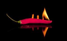 Hete Spaanse peper stock foto's