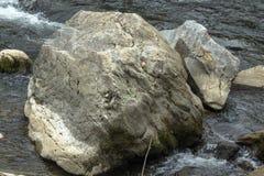Een rots-besnoeiing marmeren samenstelling die op een kleine sluimerende dinosaurus lijkt royalty-vrije stock foto