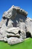 Een rots en een overzees in een dierentuin Royalty-vrije Stock Afbeeldingen