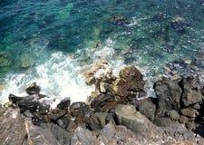Een rotsachtige kust Royalty-vrije Stock Foto's
