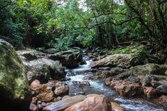 Een rotsachtige stroom in de wildernissen van Sri Lanka royalty-vrije stock foto