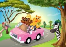 Een roze auto met dieren Stock Foto