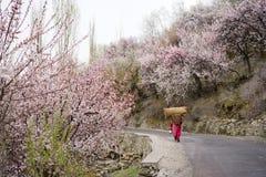 Een roze kledende vrouw die de de volledige zak en mand van de ladingsjute dragen stock foto's