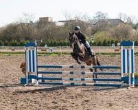 Een ruiter die van het meisjes Kaukasische paard en een hindernis met haar mooie bruine sportponey berijden springen Royalty-vrije Stock Afbeelding