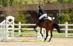 Een ruiter op een horse Stock Fotografie