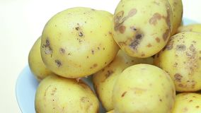 Een ruwe aardappel wordt geroteerd stock video