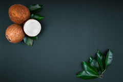 Een samenstelling van drie kokosnoten met heldergroene bladeren op een donkergroene achtergrond Hoogste mening van tropische koko Stock Foto's