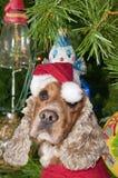 Een santa kleedde Kerstmiskerstmis van de puppyhond Royalty-vrije Stock Fotografie