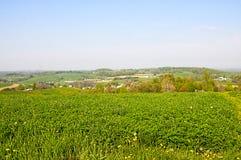 Een scène van het land van Ohio Amish Stock Foto's