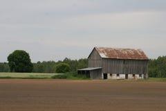 Een scène van het landlandbouwbedrijf stock foto's