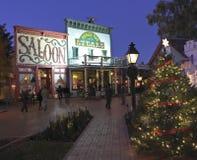 Een Scène van Top Piekkerstmis, Tucson, Arizona Royalty-vrije Stock Foto