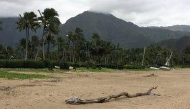 Een sc?ne van het Eiland Kauai op Hawa? royalty-vrije stock foto's