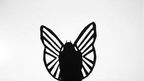 Een schaduwrijk cijfer van vlinderssilhouetten stock videobeelden