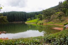 Een schilderachtig meer in de heuvels van Sri Lanka stock foto's