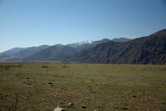 Een schilderachtige vruchtbare vallei die door bergen wordt omringd die zich voorbij de horizon uitrekken Altai, Siberi?, Rusland stock foto's
