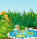 Een schildpad in de vijver met waterlilies vector illustratie