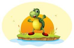 Een schildpad in een klein eiland stock illustratie