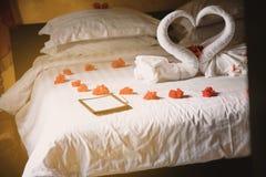 Een schot door de spiegel die zich op het witte fotokader concentreren op het bed met handdoekpauwen en rode rozen met warm licht stock fotografie