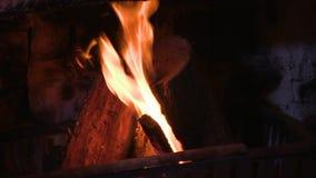 Een schot van een brandhout stock footage