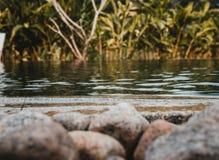 Een schot van een meer met rotsen in voorzijde en groen stock foto's