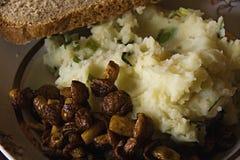 Een schotel van aardappels met gebraden Oester schiet als paddestoelen uit de grond Royalty-vrije Stock Afbeelding