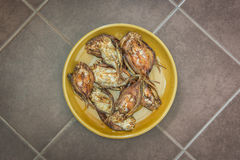 Een schotel van gebraden droge vissen (Hoog calciumvoedsel) Royalty-vrije Stock Afbeeldingen
