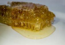Een schotel waarin een honingraat is royalty-vrije stock afbeelding