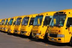 Een schuin perspectief van 8 gele Arabische schoolbussen Stock Foto