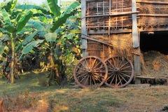 Een schuur en banaanbomen Stock Fotografie