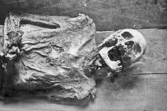Een scull en beenderen, graf in klooster stock fotografie