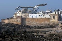 Een sectie vestingsmuren in Essaouira in Marokko Stock Afbeeldingen