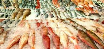 Een selectie van ruwe vissen legde zij aan zij in een supermarkt Gezond het leven concept royalty-vrije stock afbeeldingen